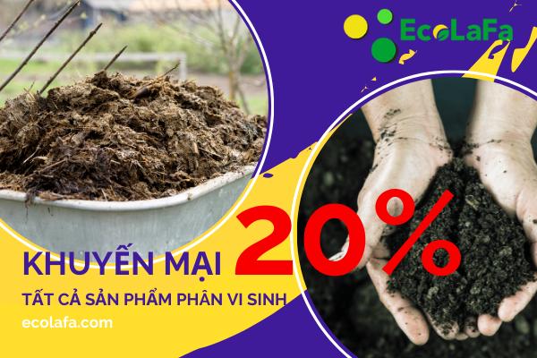 ecolafa khuyến mãi giá thể trồng cây phân vi sinh