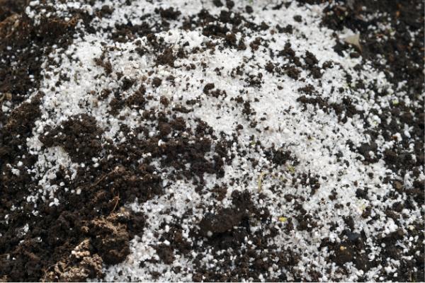Đá Perlite (đá trân châu) trộn với đất
