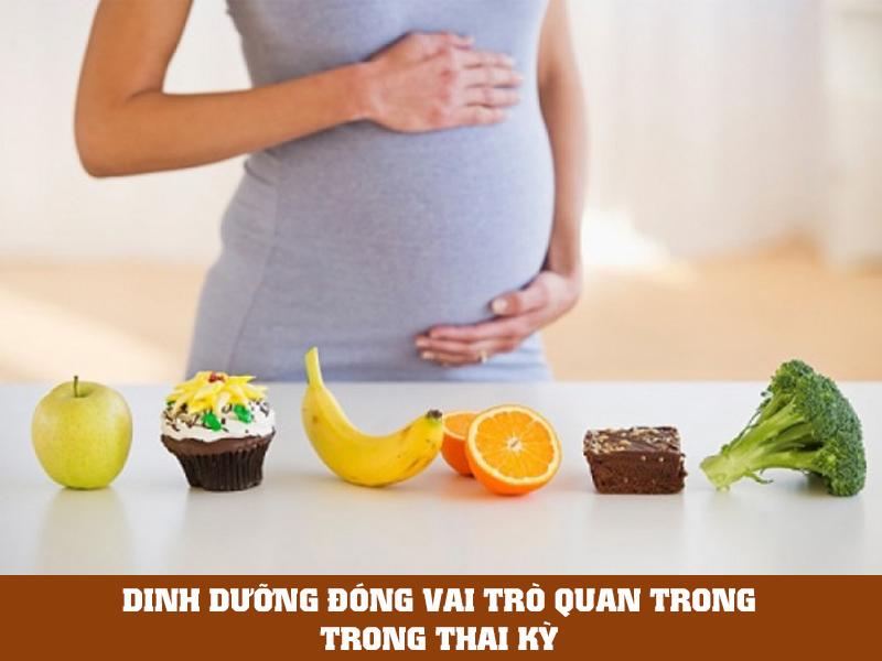 dinh dưỡng trước khi mang thai đóng vai trò quan trọng