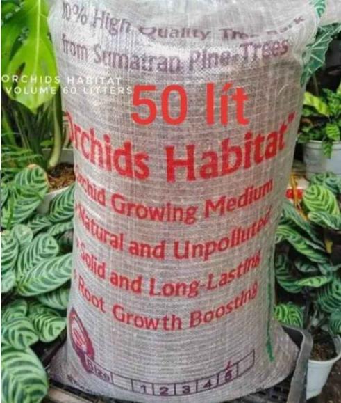 Vỏ thông Habitat