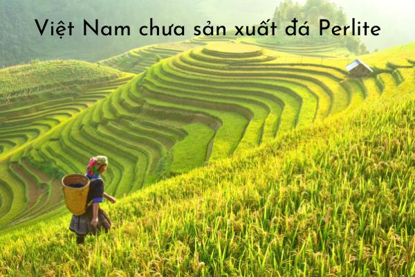 Việt Nam chưa sản xuất đá perlite đá trân châu