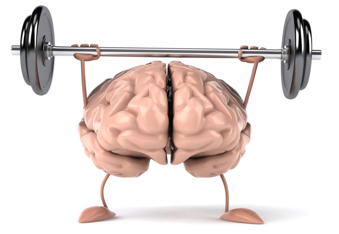 Phát triển toàn diện não bộ con người