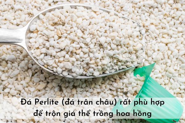 Đá Perlite (đá trân châu) để trộn giá thể trồng hoa hồng