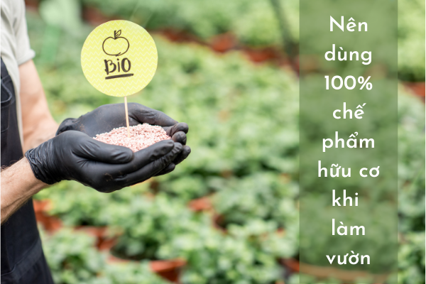 Nên dùng 100% chế phẩm hữu cơ khi làm vườn để bảo vệ cơ thể bạn