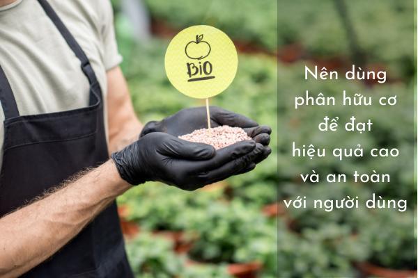 Nên dùng phân hữu cơ để đạt hiệu quả cao và an toàn với người dùng