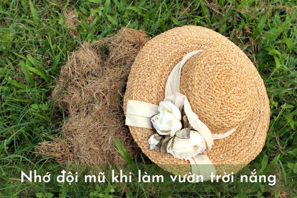 đội mũ khi làm vườn trời nắng để bảo vệ cơ thể