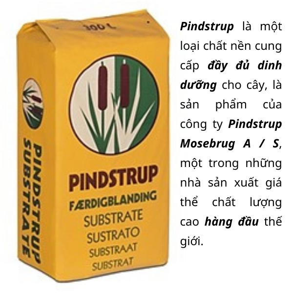 Giá thể Pindstrup