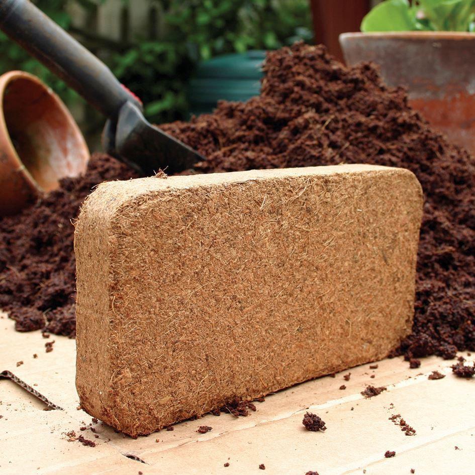 Mụn dừa đã xử lý - Giá thể mụn dừa