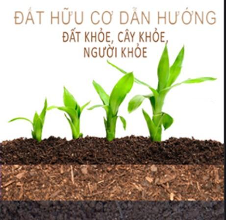 Việt Nam là nước có lợi thế về sản xuất đất hữu cơ