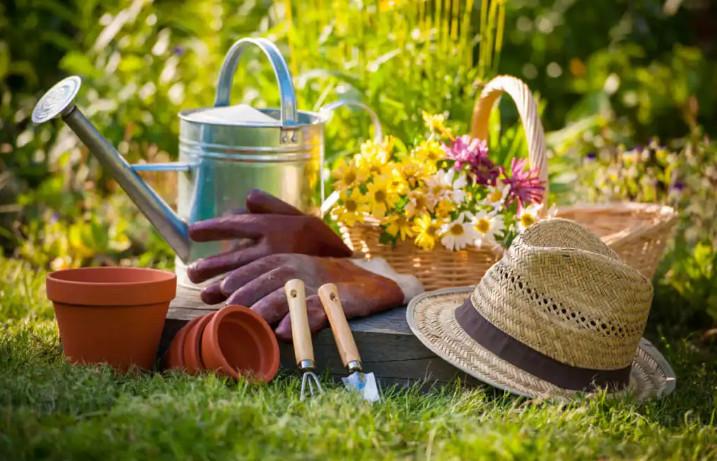 Những dụng cụ không thể thiếu khi làm vườn